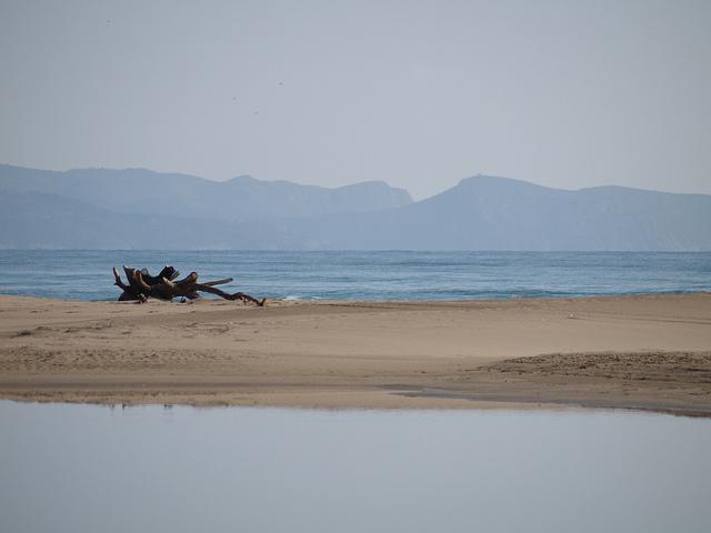 The beach at Sant Pere Pescador